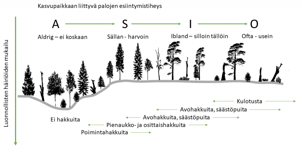 Kaavio kasvupaikkaan liittyvien palojen esiintymistiheydestä