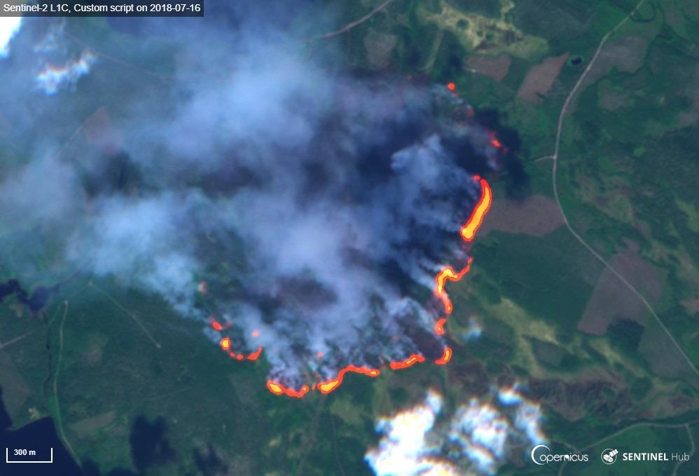Metsäpalo satelliittikuvassa