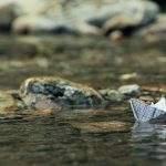 Paperivene joessa
