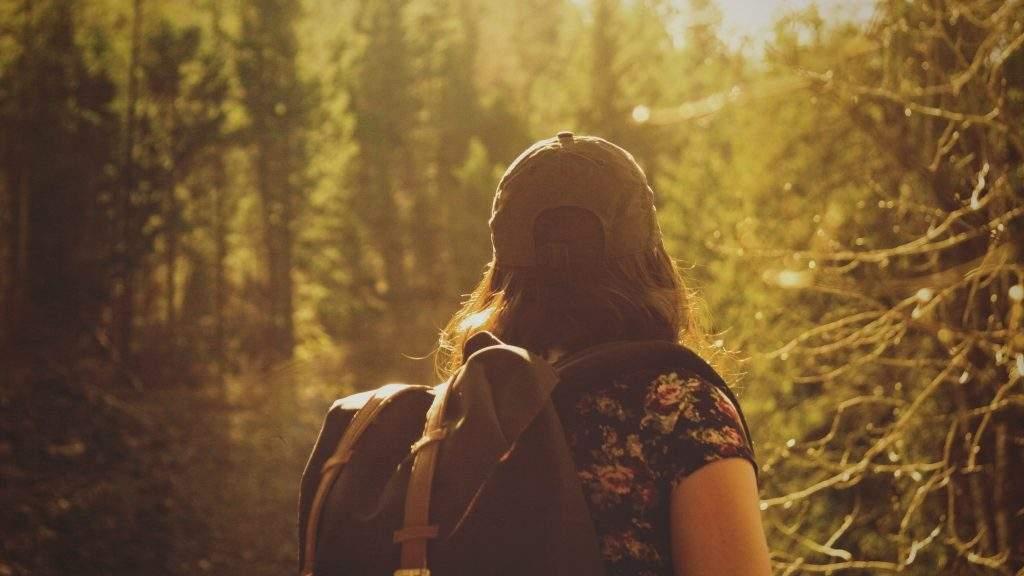 Kulkija metsässä